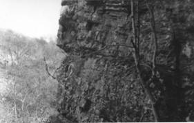Ebbor Gorge 1955. Notoriously loose rock hence top rope